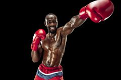 Hand of boxer over black background. Strength, attack and motion concept stock photography