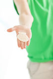 Hand of boy holds one ridged shell in palm Stock Photography