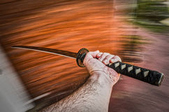 Hand brandishing a sword Stock Images