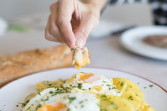 Hand with bread diping into yolk of fried egg Stock Image