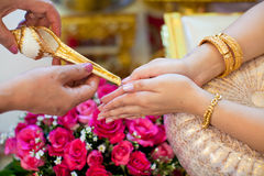 Hand of a bride receiving holy water from elders. In thai culture wedding ceremony Stock Photos