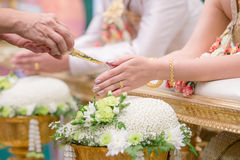Hand of a  bride receiving holy water from elders in thai culture. Hand of a bride receiving holy water from elders in thai culture wedding ceremony Stock Images