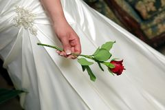 Hand of the Bride with a red rose. On white dress Royalty Free Stock Images