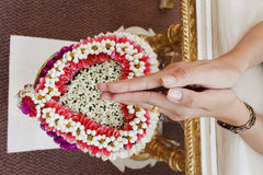 Hand of bride wait for blessed water Stock Photography