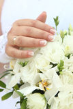 Hand of the bride royalty free stock photo