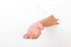 Hand through broken wall Royalty Free Stock Image