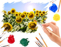 Hand with a brush painting sunflowers Royalty Free Stock Photos