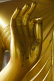Hand of Buddha Royalty Free Stock Images