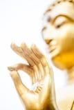 Hand of buddha Stock Images