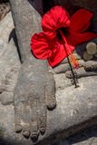 Hand of Budha with red flower Royalty Free Stock Photography