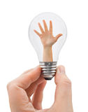 Hand with bulb Stock Photography