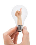 Hand with bulb and thumb Stock Photography