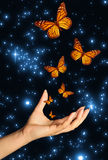 Hand with butterflies. Open female hand with butterflies flying away, against a space background Royalty Free Stock Images