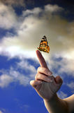 Hand and butterfly. Female hand over a blue cloudy sky with a monarch butterfly resting on the finger Stock Image