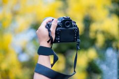 Hand and camera and travel stock photography