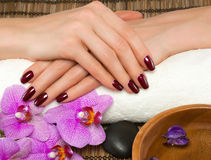 Hand care and manicure Stock Photos