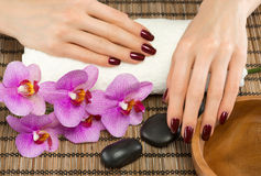 Hand care and manicure Royalty Free Stock Photography