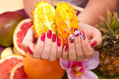 Hand care Spa Royalty Free Stock Photo