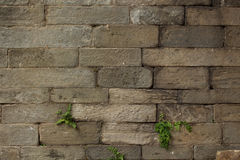 Hand Carved Stacked Stone Texture Stock Image