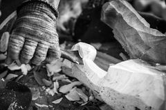 Hand of carver carving wood in black and white color tone Stock Images