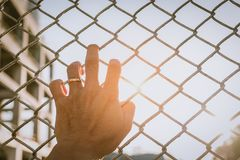 Hand catch mesh cage Stock Image