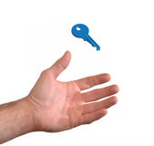 Hand catching a blue key Stock Photography