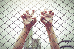 Hand catching mesh cage. The prisoner want freedom. Stock Photos