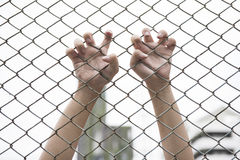 Hand catching mesh cage. The prisoner want freedom. Royalty Free Stock Photography