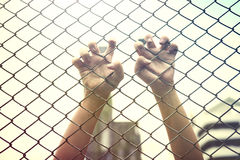 Hand catching mesh cage. The prisoner want freedom. Dramatic Blurry Hands catching mesh cage. The prisoner want freedom.Man lack of Independence Stock Photos