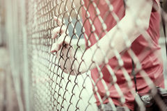 Hand catching mesh cage.. The prisoner want freedom. Dramatic Blurry Hands catching mesh cage. The prisoner want freedom.Man lack of Independence Royalty Free Stock Image