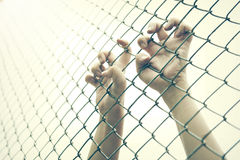Hand catching mesh cage. The prisoner want freedom. Royalty Free Stock Photos