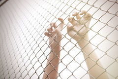Hand catching mesh cage. The prisoner want freedom. Dramatic Blurry Hands catching mesh cage. The prisoner want freedom.Man lack of Independence Royalty Free Stock Image