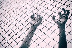 Hand catching mesh cage.. The prisoner want freedom. Royalty Free Stock Image