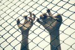 Hand catching mesh cage.. The prisoner want freedom. Royalty Free Stock Photography