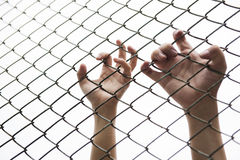 Hand catching mesh cage.. The prisoner want freedom. Royalty Free Stock Photos