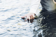 Hand with caught fish. Stock Photos