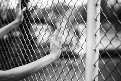 Hand and chain link fence in black and white concept Stock Photo