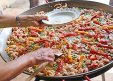 Hand of the chef adds shrimp in rice paella with seafood Stock Photos