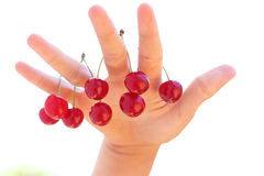 Hand and cherry. Healthy fruits of nature and hand Stock Photo