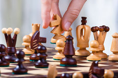 Hand of chess player with white knight Stock Image