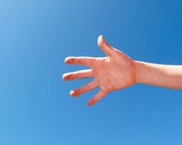 Hand of child. Hand open of child against the blue sky Stock Image