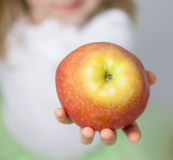 Hand of child holding ripe apple Stock Photos