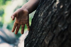 Hand of child by tree trunk