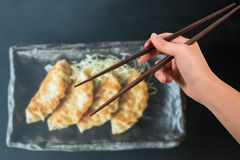 Hand with chopsticks on gyoza background Stock Photography