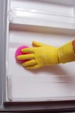 Hand cleaning refrigerator. Stock Photography