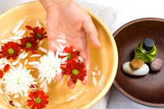 Hand cleansed by floral water Stock Photos