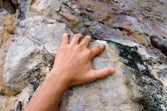 Hand climbing on the rock route summer Stock Photography
