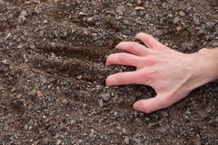 Hand clinging to a stony ground Royalty Free Stock Images