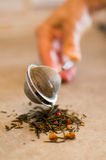 Hand close tea strainer Stock Images