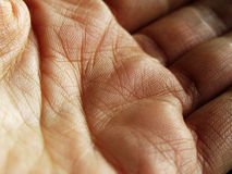 Hand close up Stock Photography